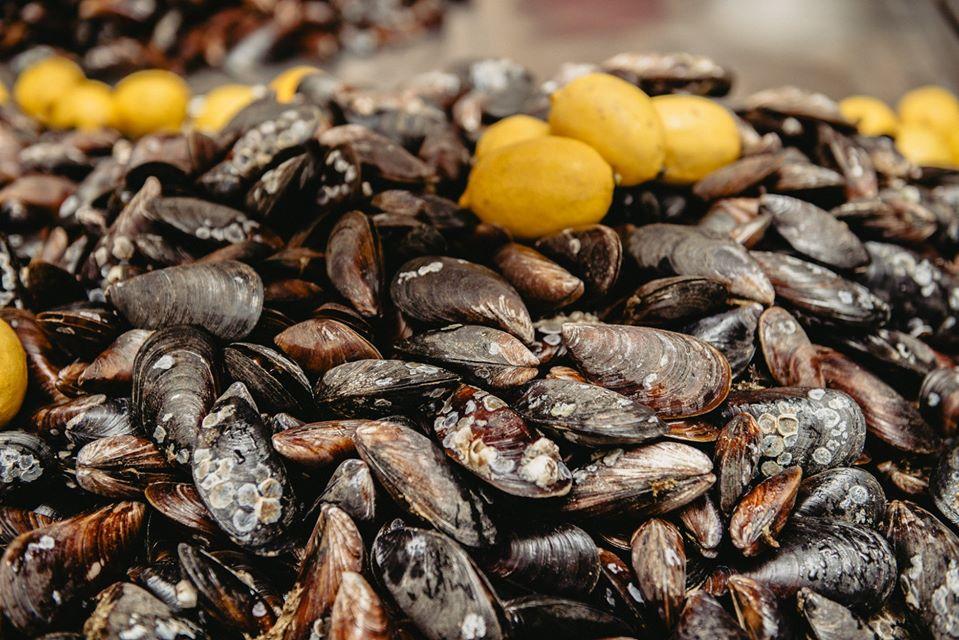 4 рецепта мидий, или Как прошел мидийный мастер-класс в Черноморке